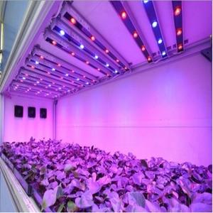 Image 4 - 100pcs/lot 1w 3w 5w full spectrum led grow light chip , best bridgelux led grow chip for indoor plant grow