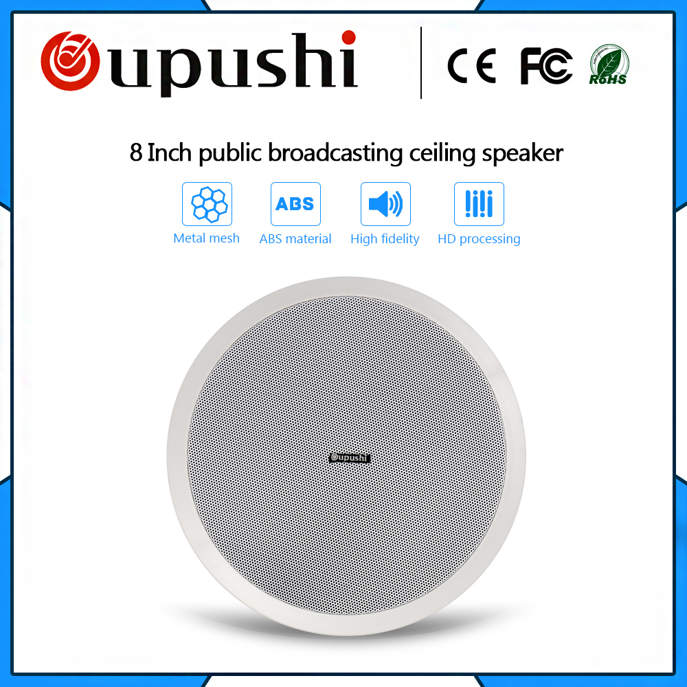 Factory Wholesale Pa System 10w Speaker Passive 8 Inch