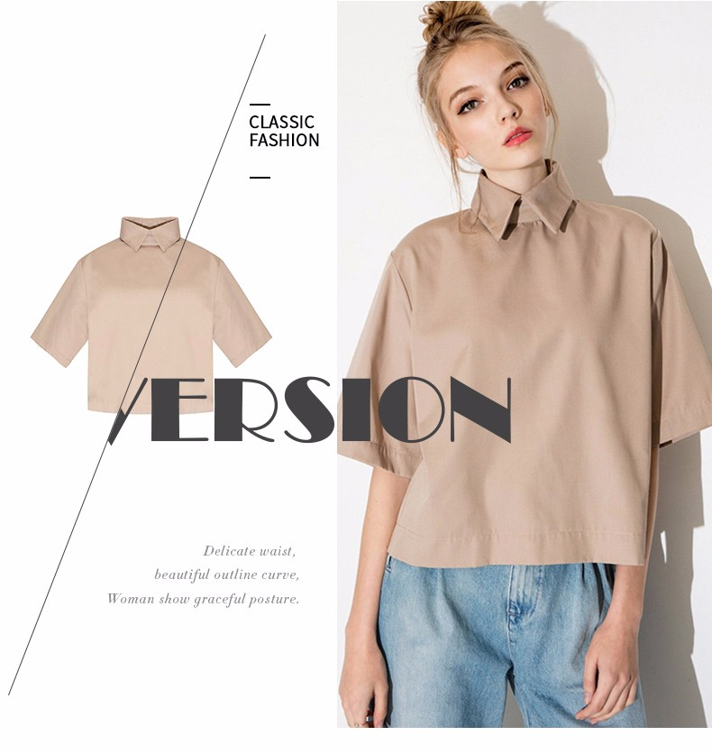 HTB1MGFWLpXXXXc6XXXXq6xXFXXXw - Style shirt fashion turn down collar blouse slim women shirt