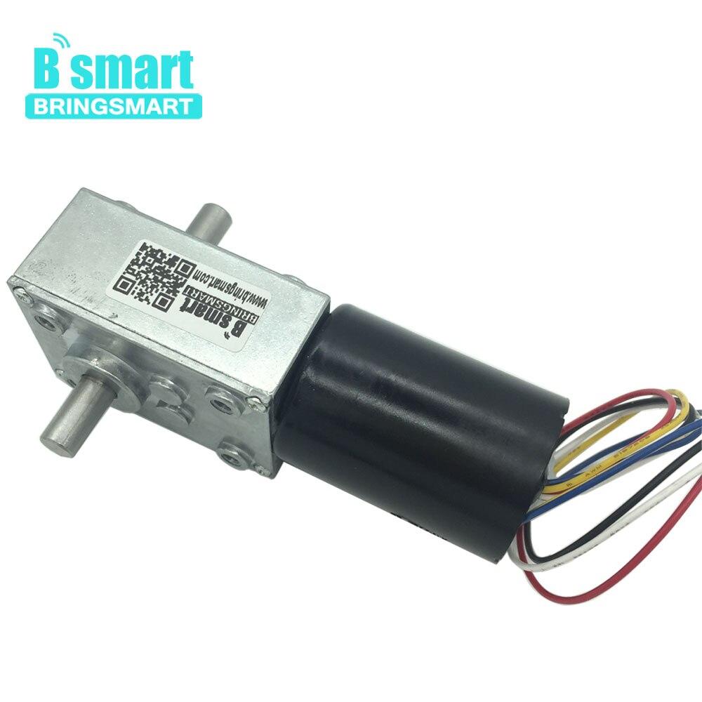 Bringsmart Mini Worm Gear Motor 5840 3650S DC 12v 24v Brushless Motor Turbine Machine 8 470rpm High Torque Double Shaft