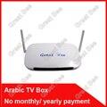 2016 Envío Libre Teledirigido, Caja del IPTV árabe, más de 400 Canales de IPTV Árabe Caja de la TV Envío Libre Gratuito de por vida