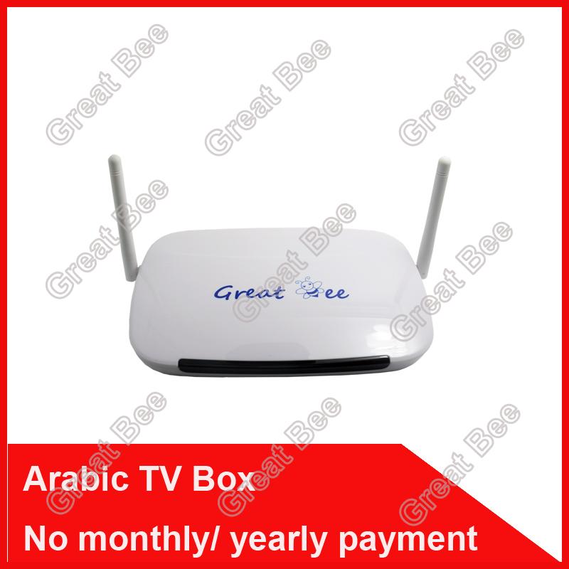 Prix pour 2017 Télécommande Livraison, arabe IPTV Box, sur 400 IPTV Arabe Canal TV Box Livraison Gratuite Livraison à vie