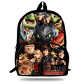 16-inch 2014 Boys Bags Kids Backpack How to Train Your Dragon Bag Pupil Book Bag Age 7-13 Children School Bags For Teenagers