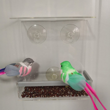 House Shape Bird Feeder Hotel Seed Peanut Hanging Suction Device Strong Adsorption Solid Transparent Plastic