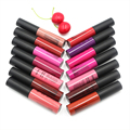 14 Colors Cosmetics Brand Makeup Lip Gloss Long Lasting Waterproof Easy to Wear Red Velvet Liquid Matte Lipstick