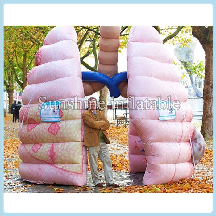 Spedizione gratuita su misura 10ft gonfiabile gigante polmone gonfiabile organo migliore per la pubblicità