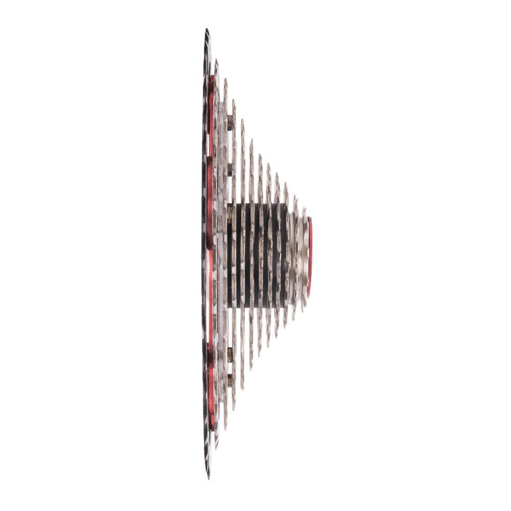 DSC06238
