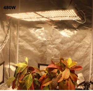 Image 4 - החדש Quantum Samsung led לוח QB288 לגדול אור Dimmable 320W 480W LM301B שבב לערבב 660NM, אדום UV IR, 7 שנים אחריות