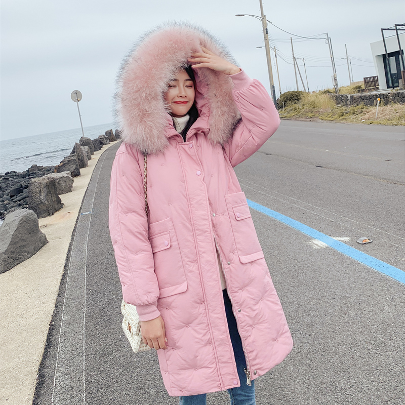 2019 New Women Winter Jacket Embroidery Thick Sonw Wear Outerwear Coat With Hooded Fur Collar Parka Female  Down Cotton Clothing