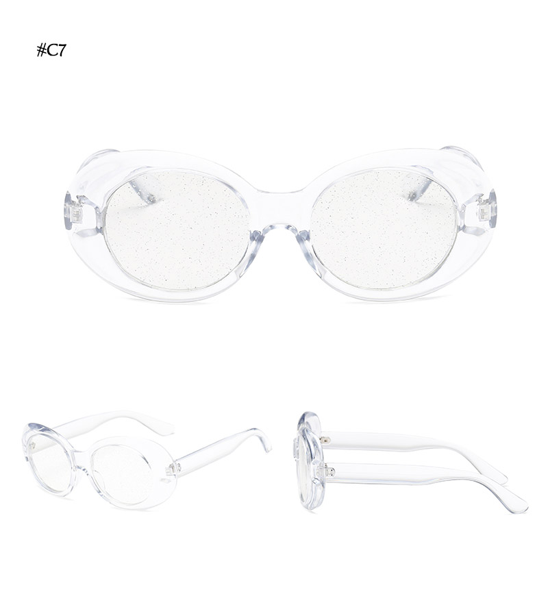 Oval Shape Sunglasses (32)