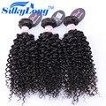 Бразильский Kinky Вьющиеся Волосы Девственницы 3 Связки SilkyLong Курчавые Волосы Вьющиеся Бразильский Девственные Волосы Вьющиеся Переплетения Человеческих Волос