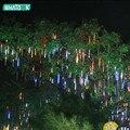 LED Meteor Shower Rain Tube Lights Outdoor 220v 110v New year Christmas Led Tree light Festival ip65 8 X 30cm suit x 100pcs