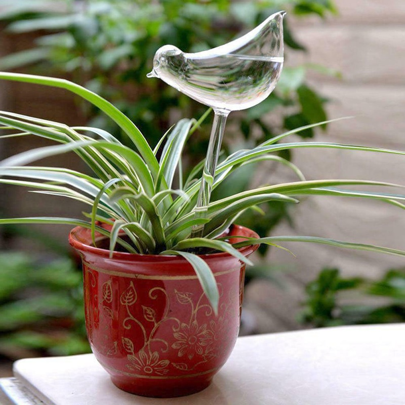 4 Shapes House Plants Flowers  Water Feeder Automatic Self Watering Devices Clear Glass Water Feeder Bird Shape