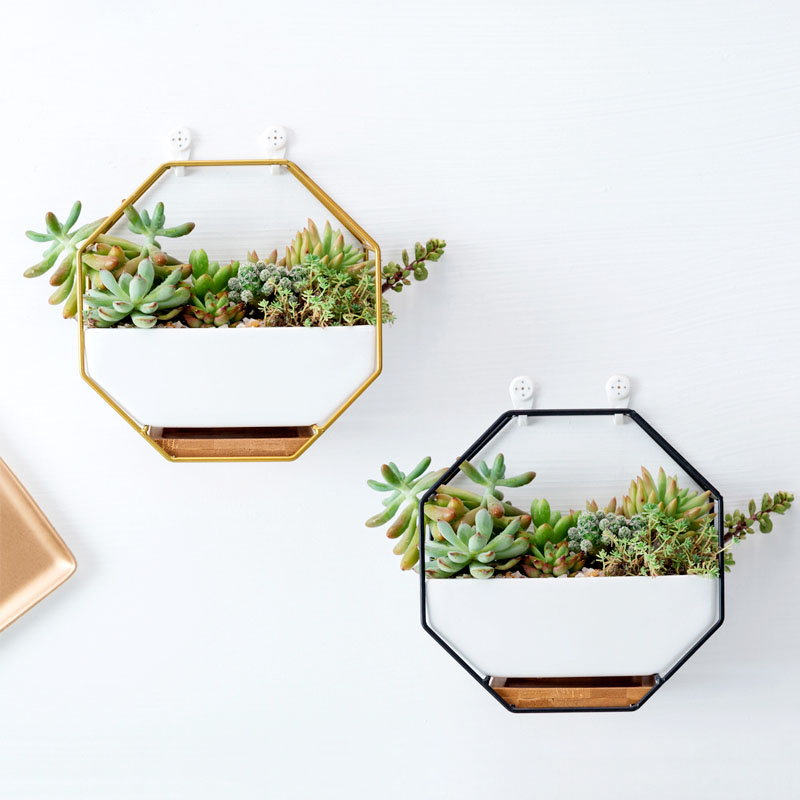 succulent Flowerpot Nordic Ceramic pot The creative personality simple Indoor basin Take the tray Long platter ceramic pot
