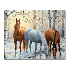 DIY Oil Painting By Numbers Drawing Animal Horses Pictures Handpainted On Canvas Abstract Wall Art Home Decor Kids Unique Gift(China)