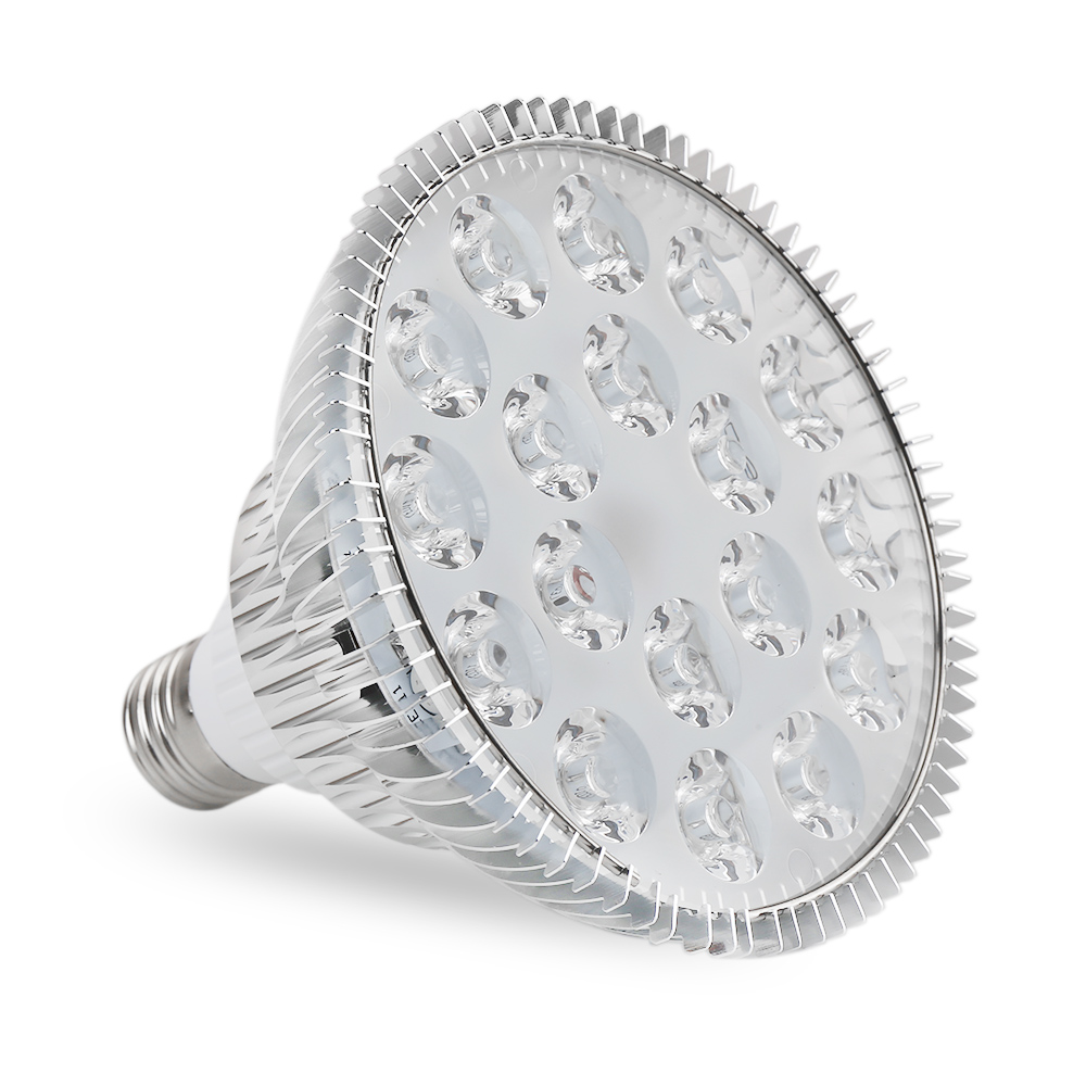 High Quality lamp holder
