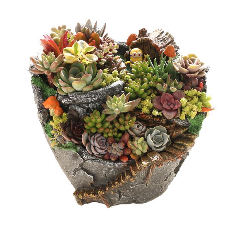 New Plants Pot Tiny Creative Flowers Succulent Plants Pot Holders