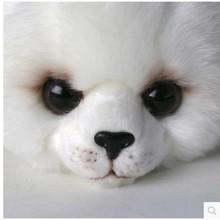 Free shipping  super cute 23cm .33cm  plush toy cartoon small seal  stuffed doll girls boys  birthday gift