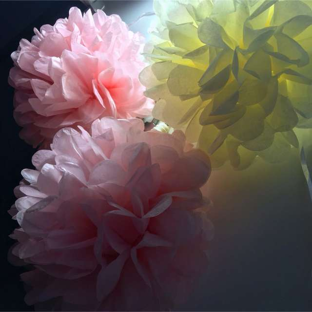 Cute Babyshower Decoration 25cm 10 Inch Tissue Paper Flowers Paper Pom Poms Balls Lanterns Party Decor Craft Wedding