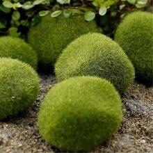 Бриофиты мох размеров камни травы выбор искусственный путь украшение бонсай сада