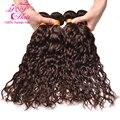 Dark Brown Brasileiro Virgem Cabelo Natural Wave 4 Bundles Molhado e Ondulado Virgin Brazilian Cabelo Weave Bundles Remy Do Cabelo Humano feixes