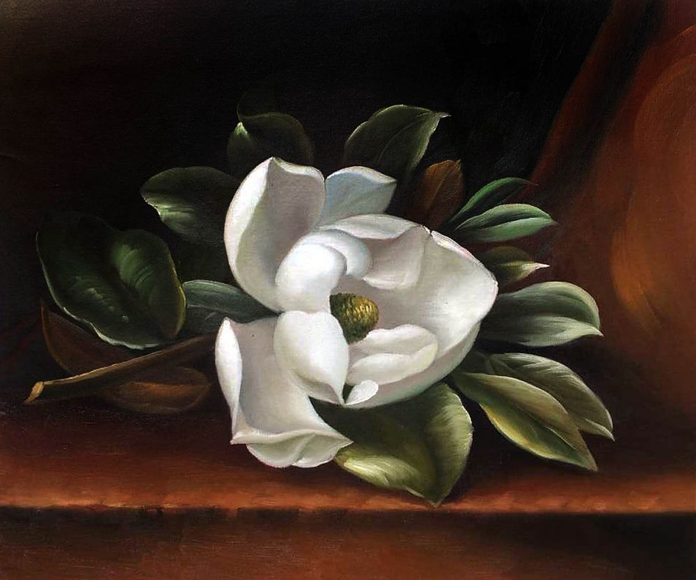 Online Shop Beautiful Flower Painting For Kitchen The Magnolia