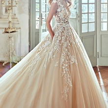 Fnoexw Champagne Tulle Appliques A-Line Wedding dresses