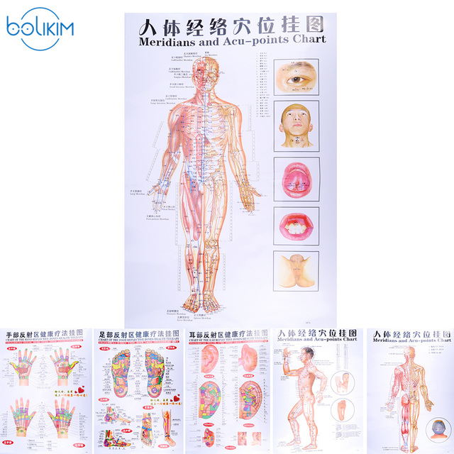 BOLIKIM 6Pcs English Hand&Foot&Ear&body Meridian points of human wall chart female /male acupuncture massage point map flipchart-in Massage & ...