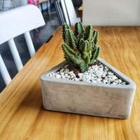 DIY Cement Craft Clay Vase Small Flower Mould Triangular Planter Silicone Concrete Mold Succulent plant Pot Mold