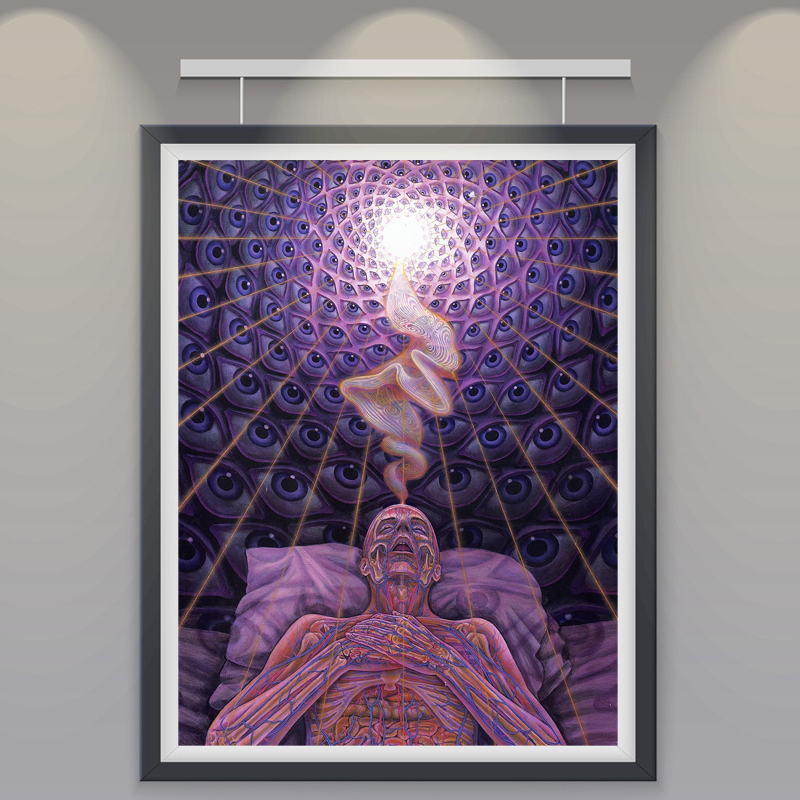 Trippy alex grey art silk fabric psychedelic poster print Decorating walls with posters