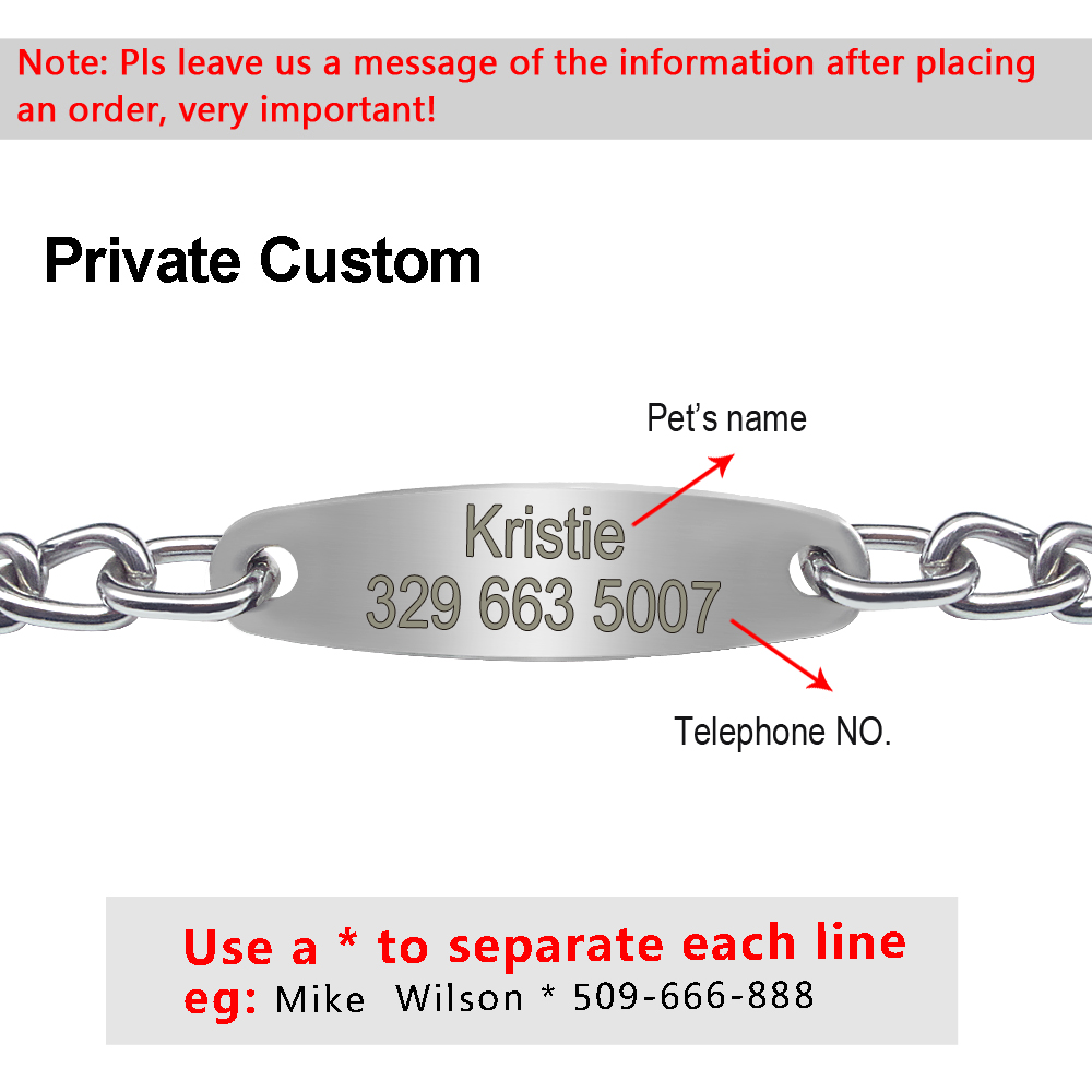 Personalized Pet Dog Chain Choke Collar Pets Training Engraved ID Slip Collars Choker For Medium Large
