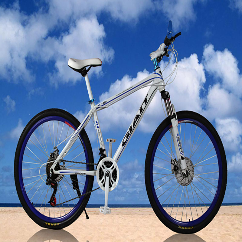 High Carbon Steel Materia Mountain Bicycle With 21 Speed And 26 Inch Double Disc Brake Speed Change