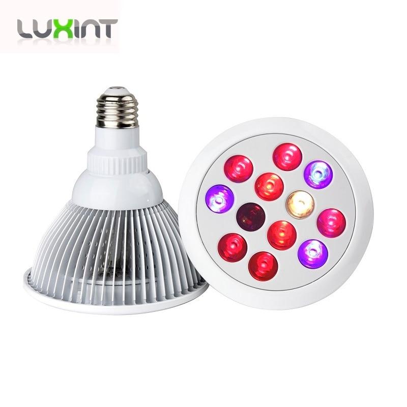 ФОТО Led grow light 660nm 460nm PAR 38 E27 grow lamp full spectrum 12*3w grow bulb light for greenhouse hydroponics plants growing