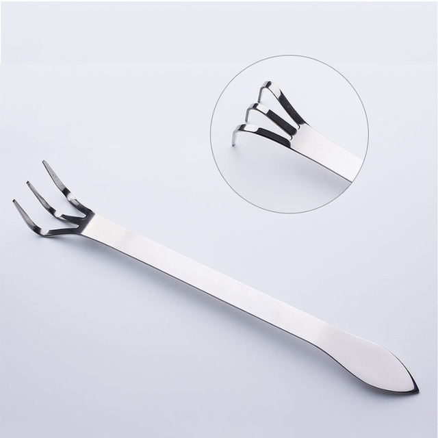 1pcs Stainless Steel root rake tool Mix-function With Root Rake and Spatula Bonsai & Gardening Tools