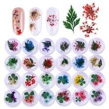 1 Box Colorful Real Nail Dried Flower Clover Leaf Preserved Flower 3D Manicure Nail Art Decoration for UV Gel