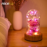 LED Copper Wire Bottle Decorative Night Light String Rechargeable Battery Bluetooth Wireless Speaker Abajur Table Lamp