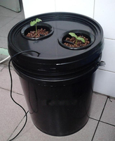 10L Bucket Aeroponics pot with 2 net cup air pump hydroponics system indoor