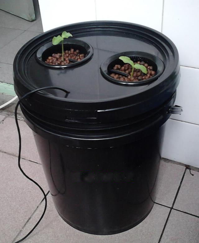 10L Bucket Aeroponics Pot With 2 Net Cup Air Pump Hydroponics System Indoor