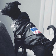 Dog Clothes Adidog French Bulldog Pupreme Shirt Dog Windbreaker Sport Retro Dog Hoodies Pet Clothes Ropa Perro Puppy Dog Pugs oem adidog