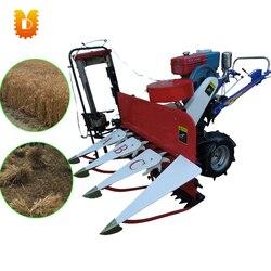 Gorąca sprzedaż maszyna do segregatorów rolniczych do segregatora ryżu pszennego w Roboty kuchenne od AGD na