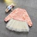 2016 мода весна детские бабьем девушки из сетки лоскутное платье младенцы ну вечеринку принцесса пачки платья MT623