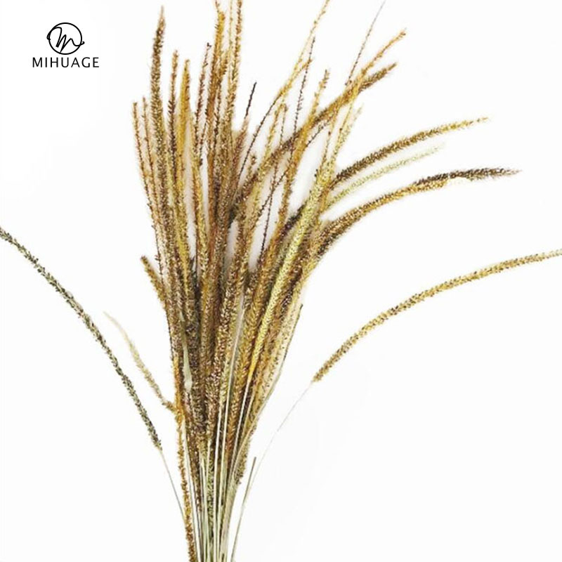 MiHuaGe 20PCS Dried Flower Kirin Grass Resin Pure Natural Fresh Keeping Valentine 39 S Day Interior Decoration Dried Flowers in Artificial amp Dried Flowers from Home amp Garden
