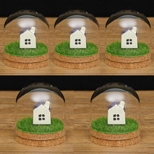 5x Desktop Glass Dome Cover Shade Shield Cloche Bell Jar Landscape Terrariums with Wood Cork,Dry Flower Vase(China)