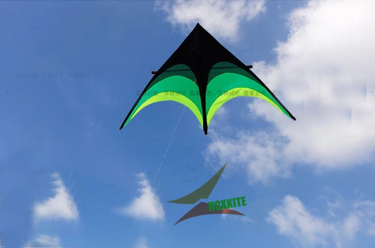 quality prairie kite with10m 8