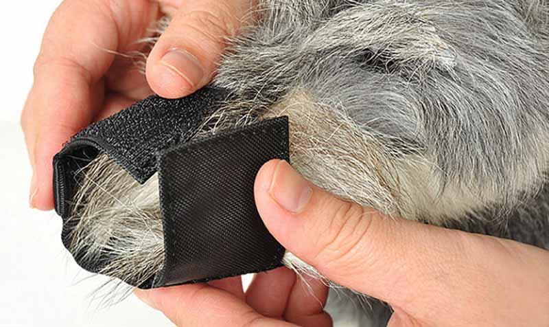 SYDZSW Superior Quality Dog Muzzle Breathable Mesh Black Nylon Pet Muzzle for Dog Puppy Dog Mask Prevent Bark Bite Pet Products8