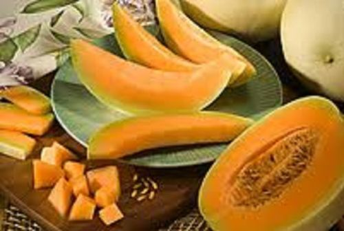 AAA New Rare Orange Honeydew Melon Gourmet Heirloom 50 seeds RARE No GMO's 100% Organic