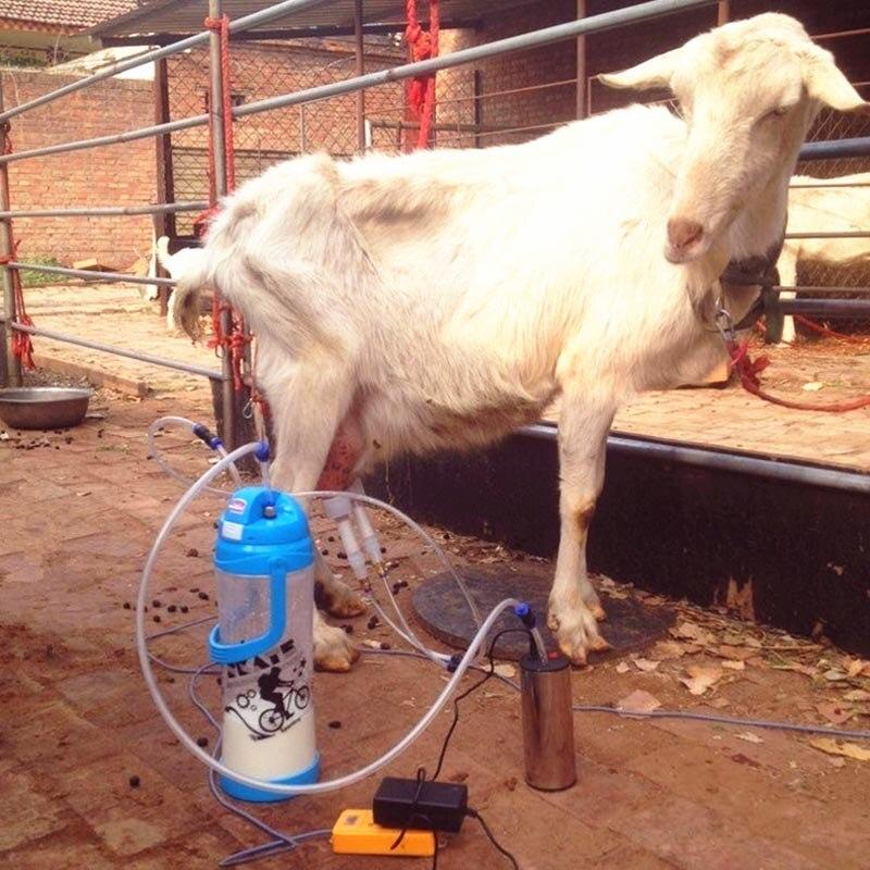 Melken knaben Milf melkt