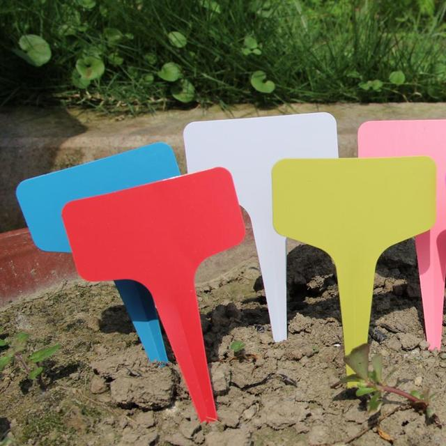 100pcs 6x10cm Plastic Plant Labels T Shape Seed Blank Pot Marker Nursery Pots Garden