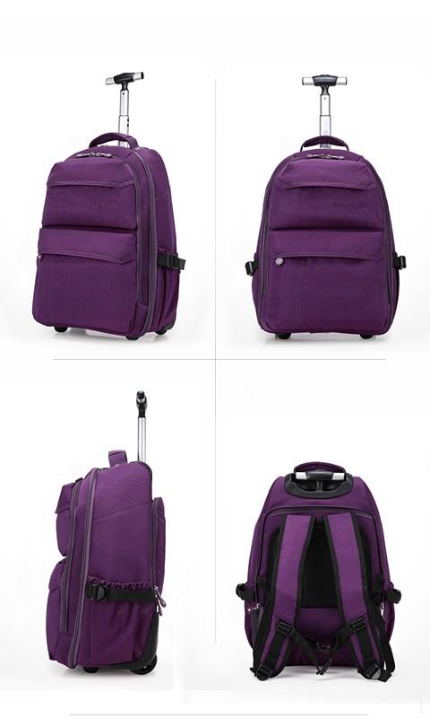 Purple Color 2