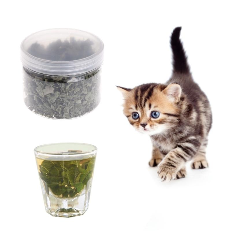 Natural Silvervine Leaves Cat Catnip Dried Polygonum Matatabi Toys Flavor Snacks Cat Toys